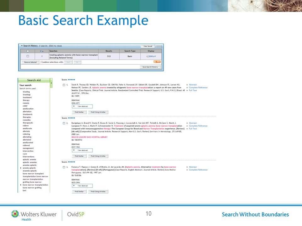 10 Basic Search Example