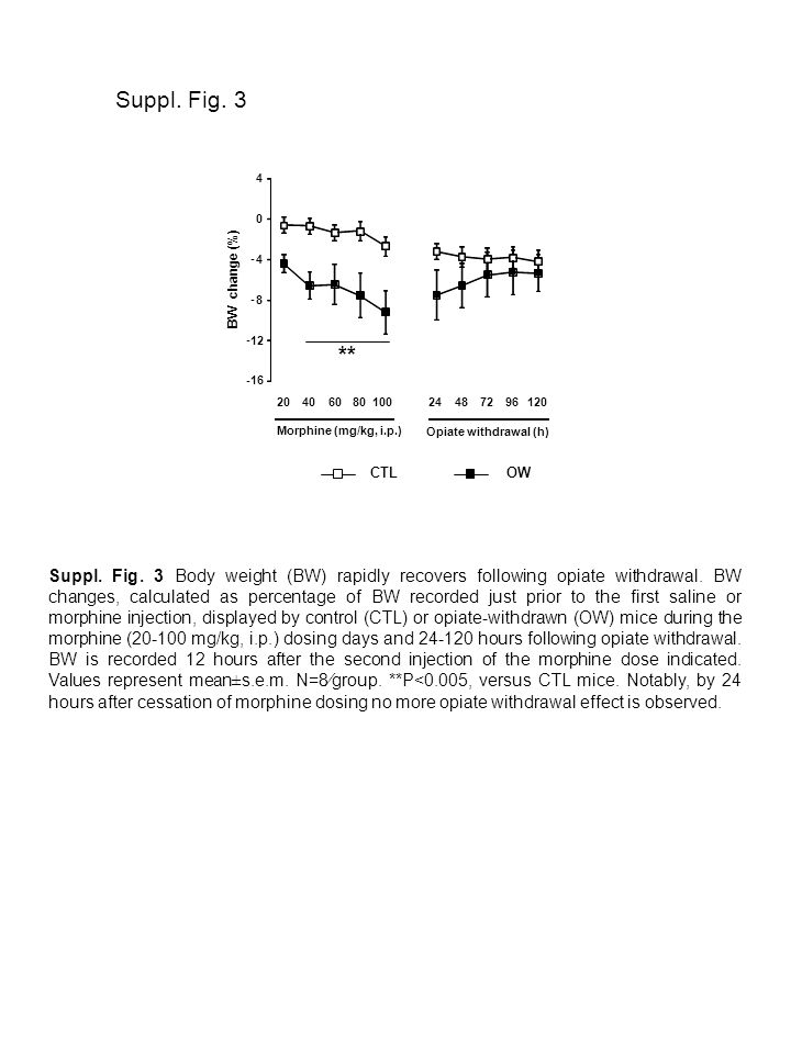 Suppl. Fig. 3 Suppl. Fig. 3 Body weight (BW) rapidly recovers following opiate withdrawal.