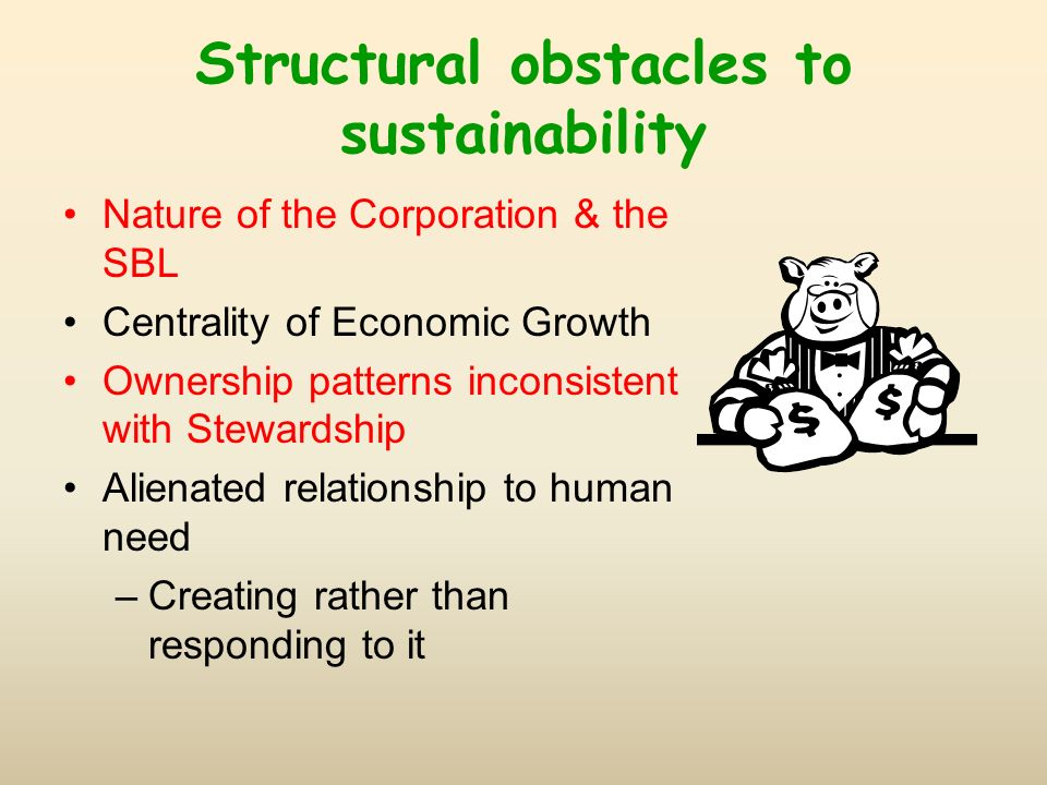 Structural obstacles to sustainability Nature of the Corporation & the SBL Centrality of Economic Growth Ownership patterns inconsistent with Stewardship Alienated relationship to human need –Creating rather than responding to it