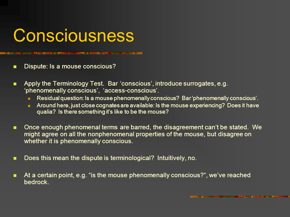 Consciousness Dispute: Is a mouse conscious. Apply the Terminology Test.
