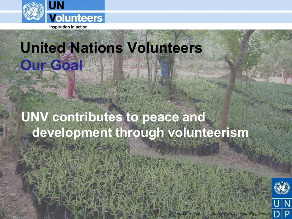 UNV is administered by the UN Development Programme United Nations Volunteers Our Goal UNV contributes to peace and development through volunteerism