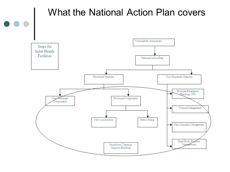 What the National Action Plan covers Vulnerability Assessment National Action Plan Structural MeasuresNon-Structural Measures Non-Structural Components Structural Components New constructionRetro-fitting Hospital Emergency Planning - ICS Trauma Management Mass Causality Management Dead Body Disposal Management Guidelines, Training, Capacity Building Steps for Safer Health Facilities