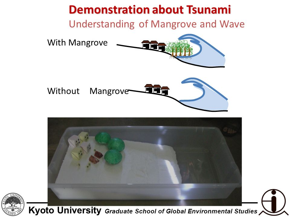 Kyoto University Graduate School of Global Environmental Studies With Mangrove Without Mangrove Demonstration about Tsunami Understanding of Mangrove and Wave