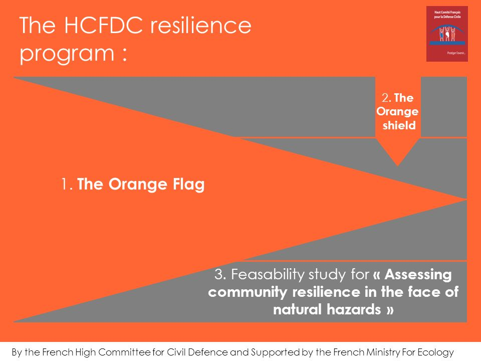 The HCFDC resilience program : 2.