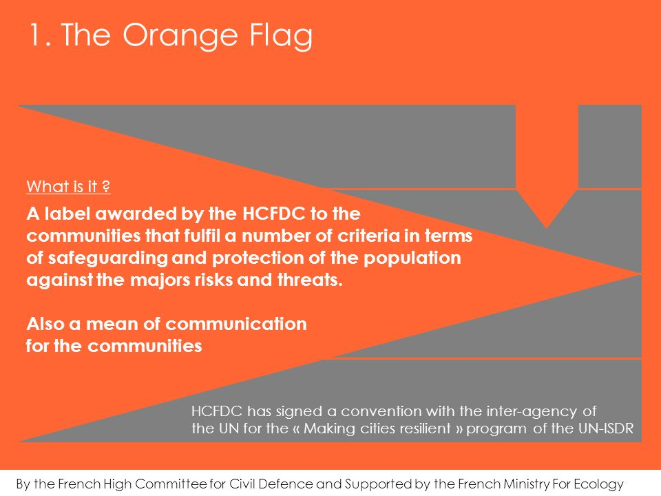1. The Orange Flag What is it .