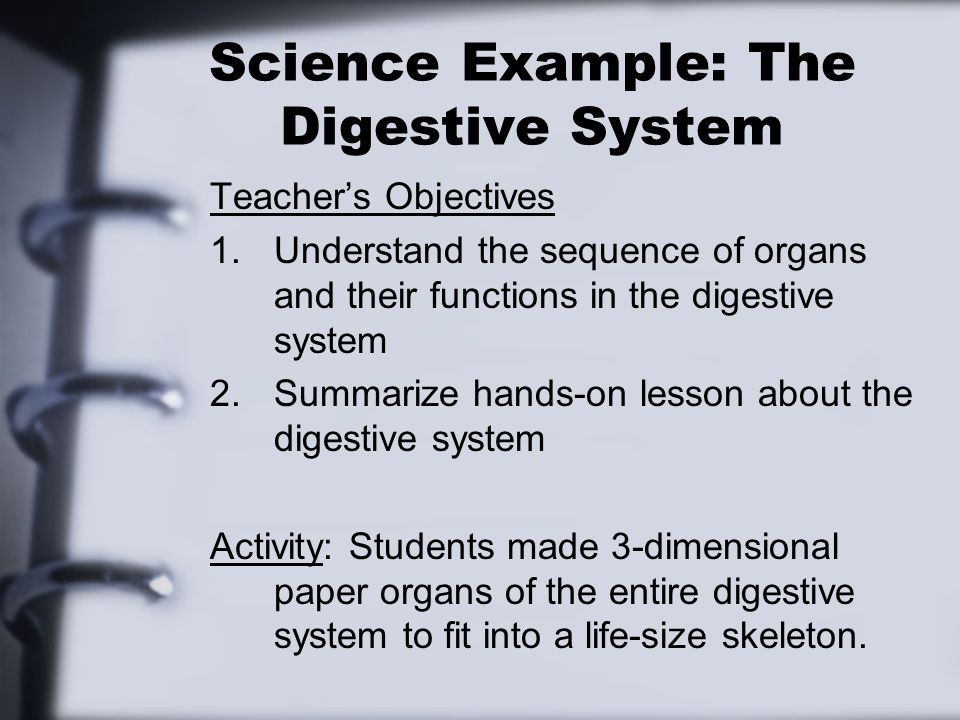 Science Example: The Digestive System Teachers Objectives 1.Understand the sequence of organs and their functions in the digestive system 2.Summarize hands-on lesson about the digestive system Activity: Students made 3-dimensional paper organs of the entire digestive system to fit into a life-size skeleton.
