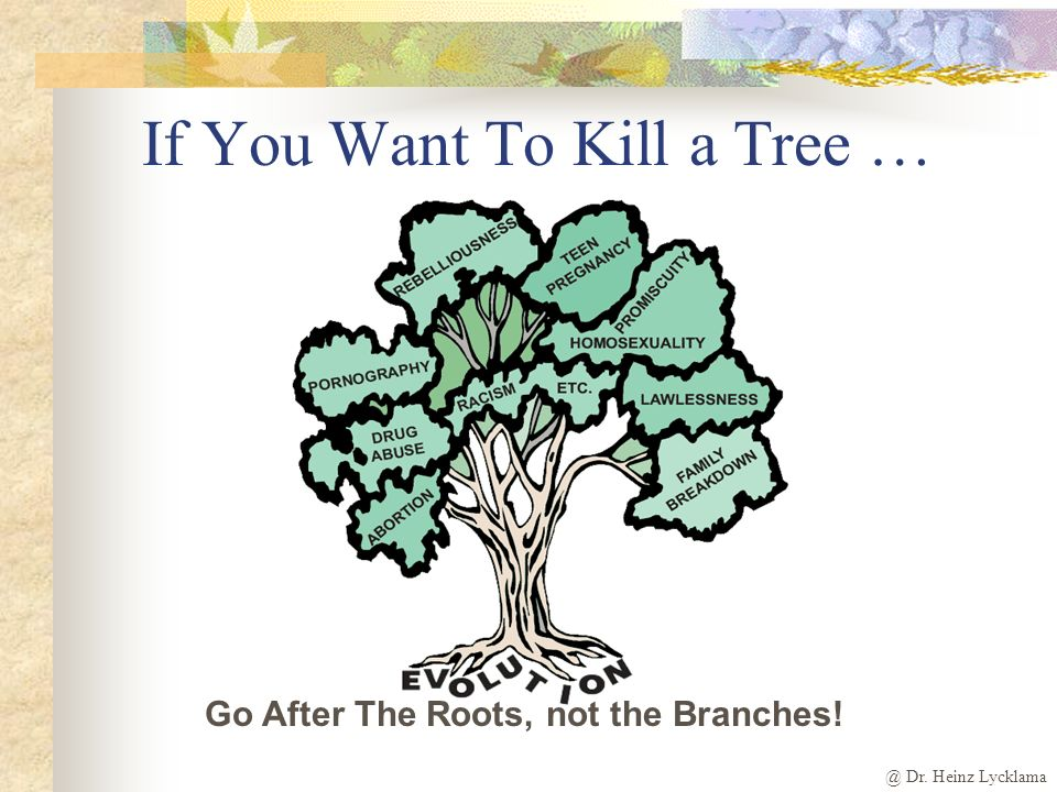 @ Dr. Heinz Lycklama Go After The Roots, not the Branches! If You Want To Kill a Tree …