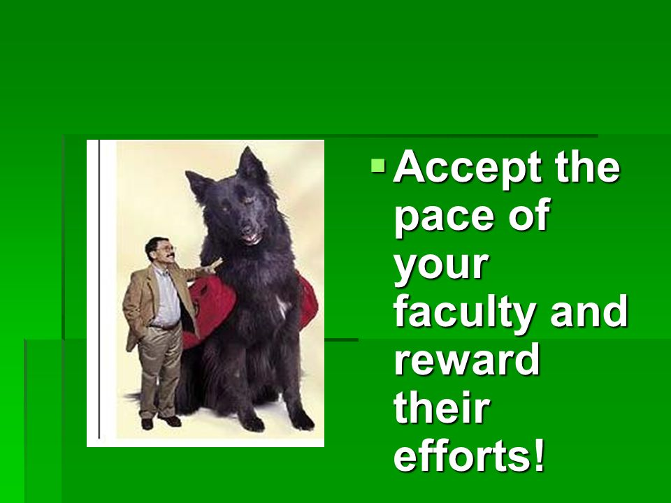 Accept the pace of your faculty and reward their efforts.