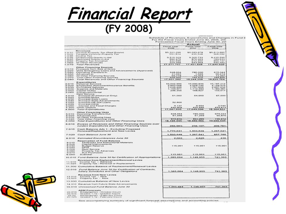 Financial Report (FY 2008)