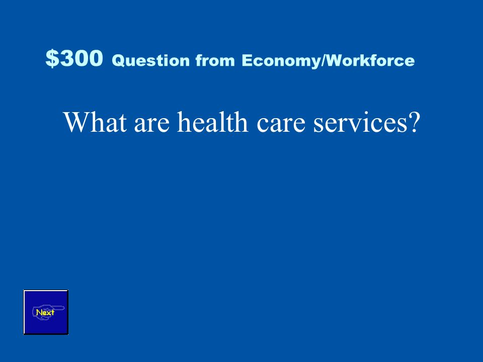$300 Question from Economy/Workforce What are health care services