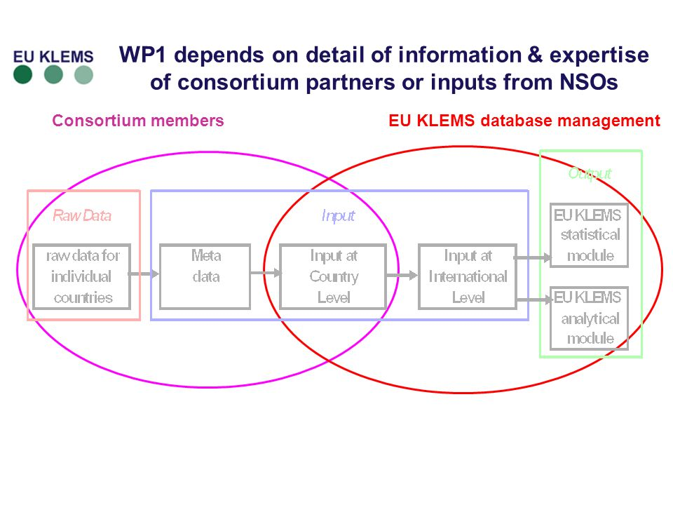 16 Consortium membersEU KLEMS database management WP1 depends on detail of information & expertise of consortium partners or inputs from NSOs