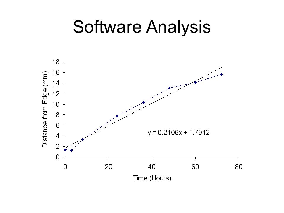 Software Analysis