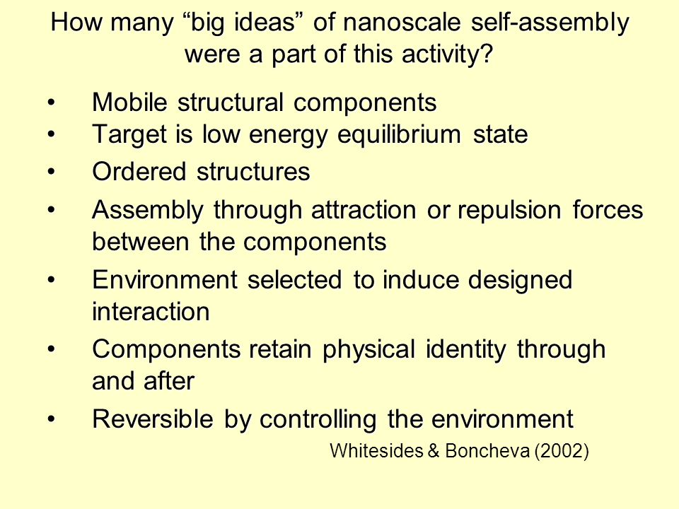 How many big ideas of nanoscale self-assembly were a part of this activity.