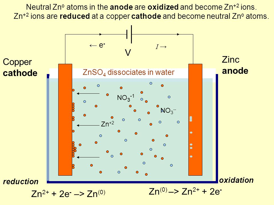 Neutral Zn o atoms in the anode are oxidized and become Zn +2 ions.
