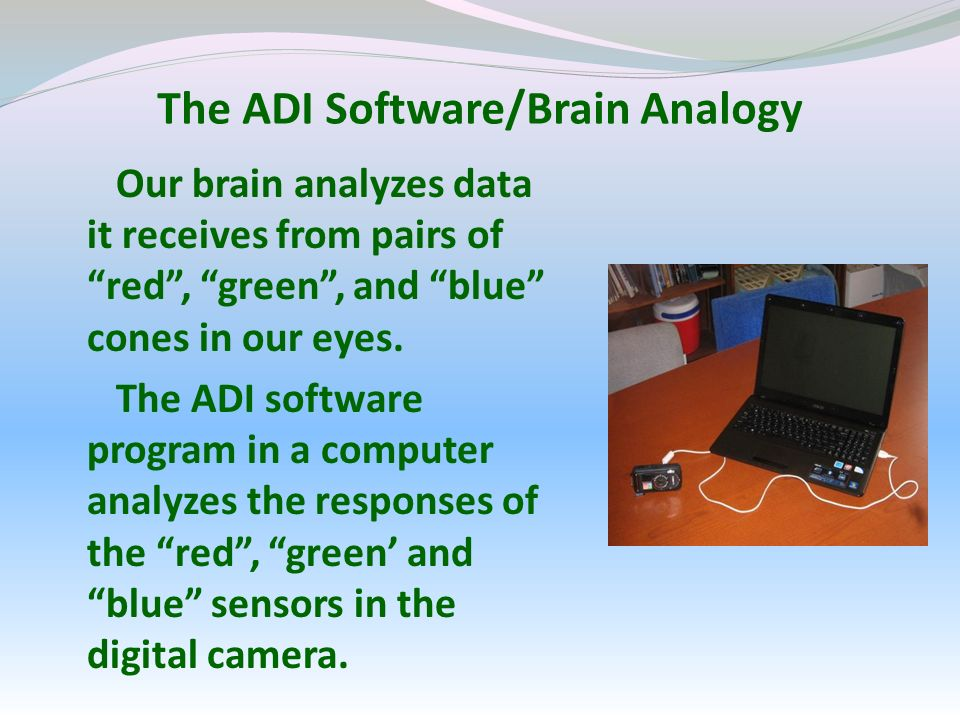 The ADI Software/Brain Analogy Our brain analyzes data it receives from pairs of red, green, and blue cones in our eyes.
