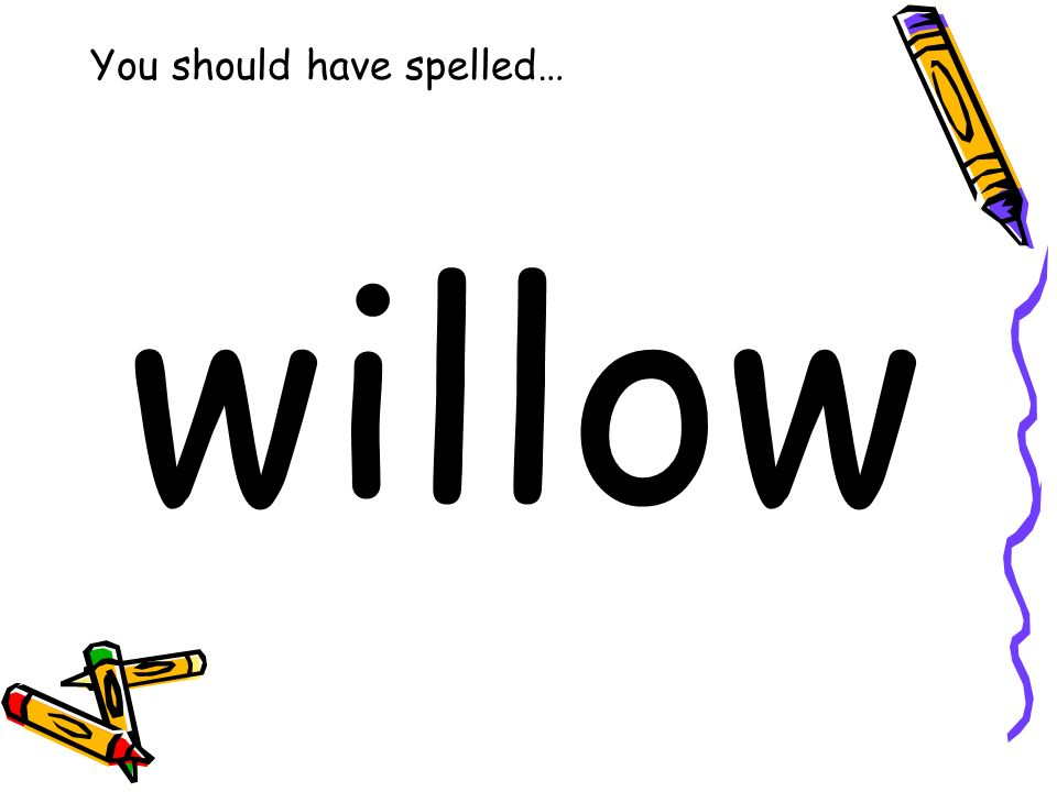You should have spelled… willow