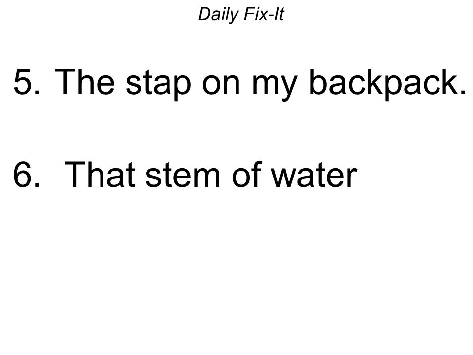 Daily Fix-It 5. The stap on my backpack. 6. That stem of water