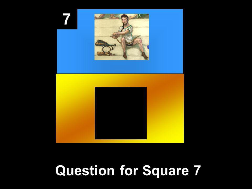 7 Question for Square 7