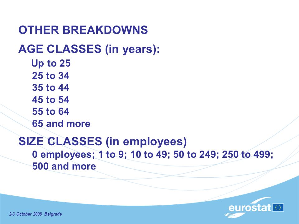 2-3 October 2008 Belgrade OTHER BREAKDOWNS AGE CLASSES (in years): Up to 25 25 to 34 35 to 44 45 to 54 55 to 64 65 and more SIZE CLASSES (in employees) 0 employees; 1 to 9; 10 to 49; 50 to 249; 250 to 499; 500 and more