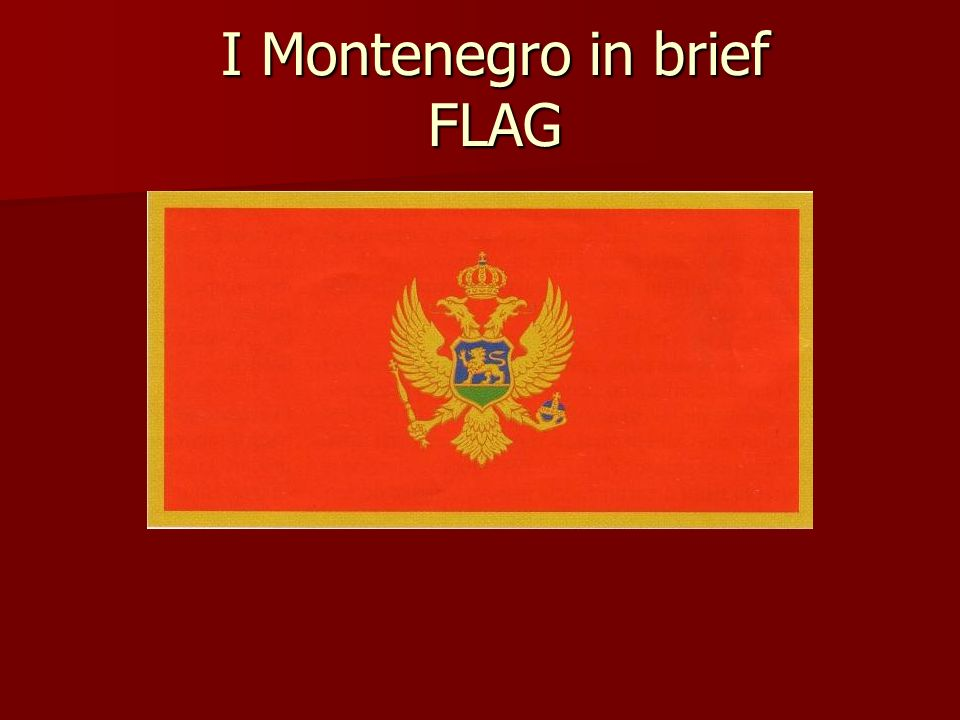 I Montenegro in brief FLAG