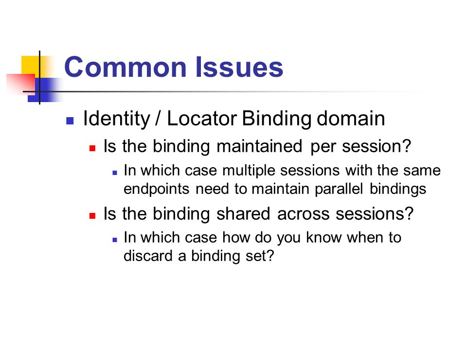 Common Issues Identity / Locator Binding domain Is the binding maintained per session.
