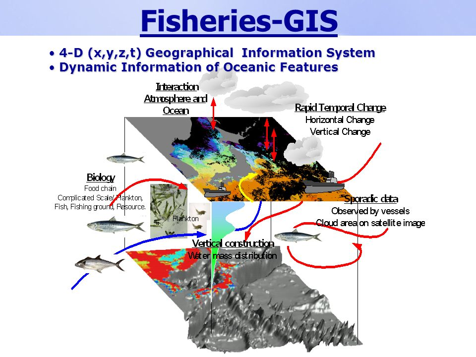 Fisheries-GIS 4-D (x,y,z,t) Geographical Information System 4-D (x,y,z,t) Geographical Information System Dynamic Information of Oceanic Features Dynamic Information of Oceanic Features