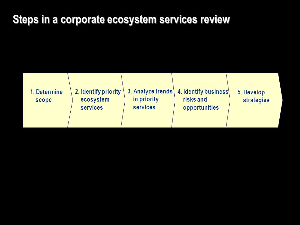 5. Develop strategies Steps in a corporate ecosystem services review 4.