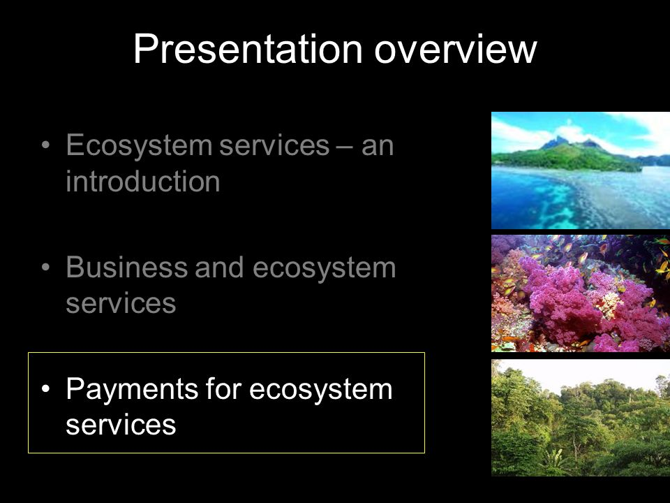 Presentation overview Ecosystem services – an introduction Business and ecosystem services Payments for ecosystem services