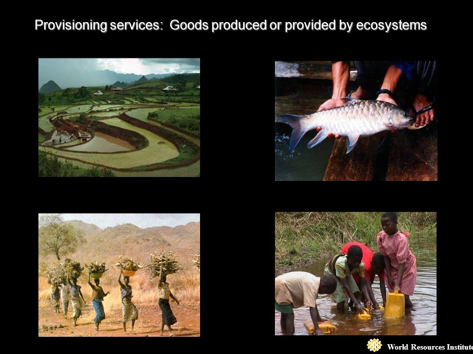World Resources Institute Provisioning services: Goods produced or provided by ecosystems