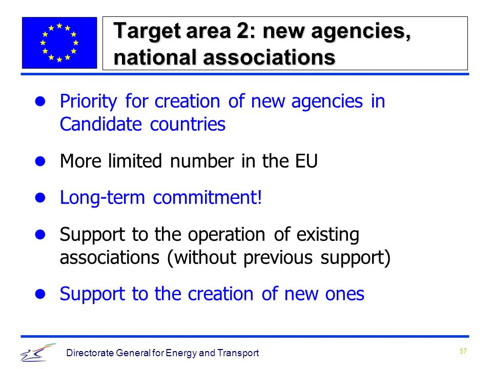 57 Directorate General for Energy and Transport Target area 2: new agencies, national associations Priority for creation of new agencies in Candidate countries More limited number in the EU Long-term commitment.