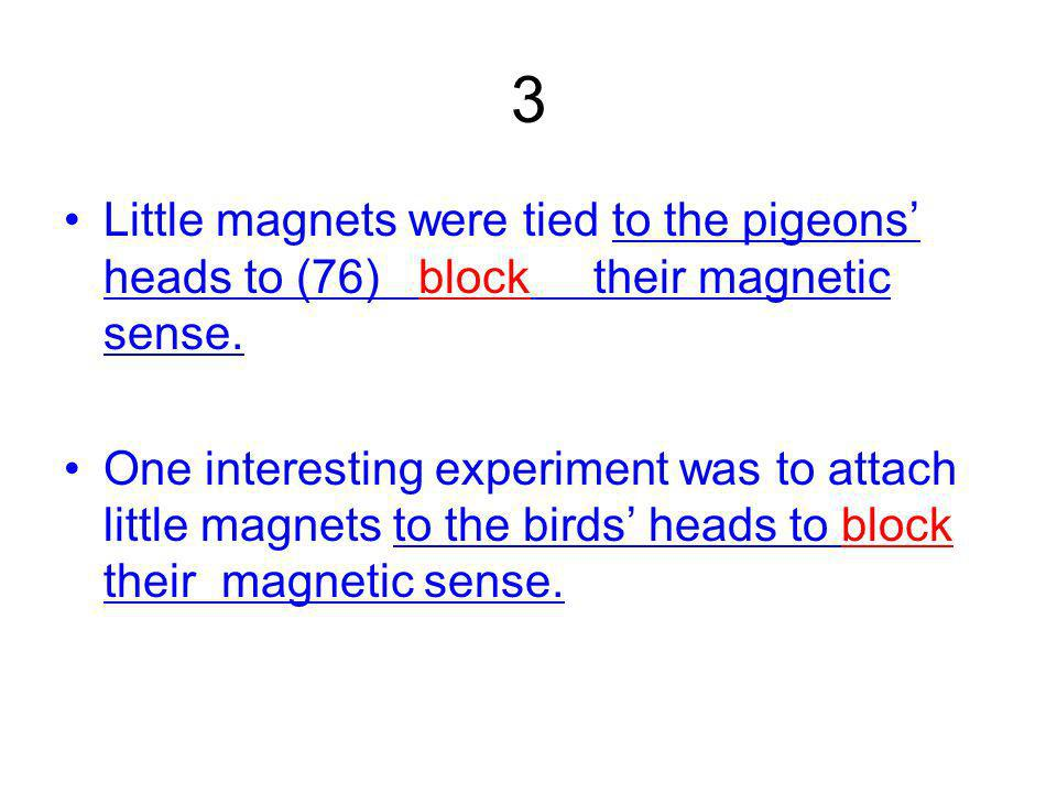 3 Little magnets were tied to the pigeons heads to (76) block their magnetic sense.