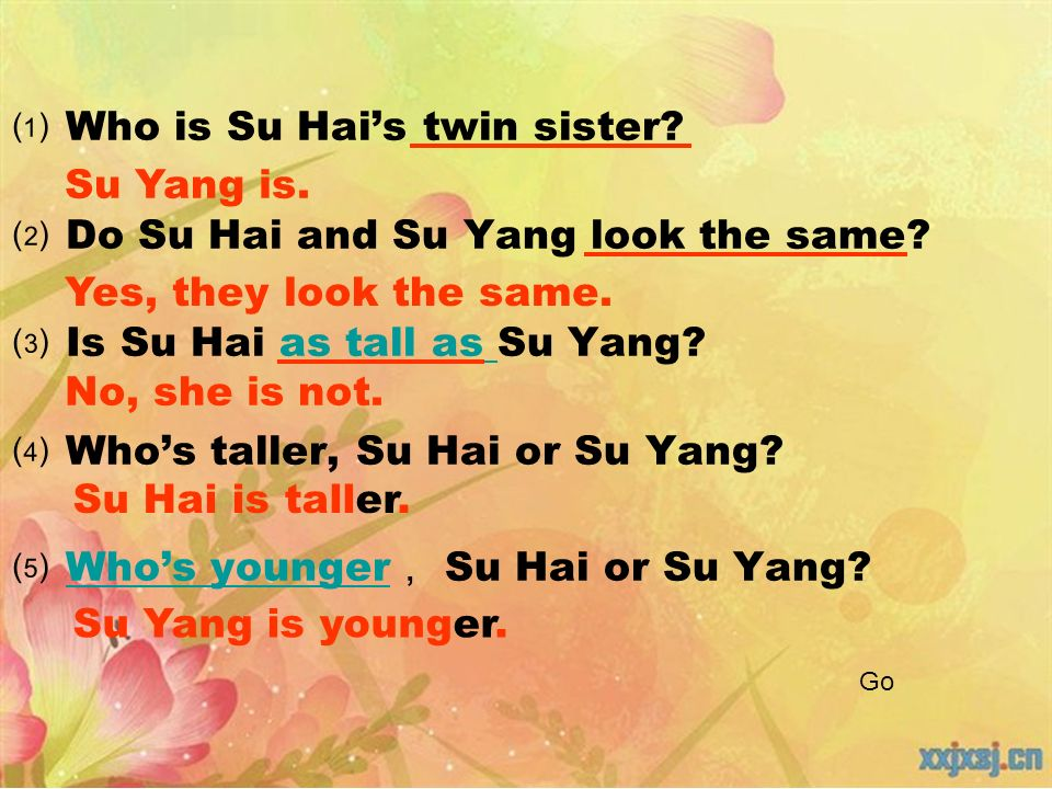 Who is Su Hais twin sister. Do Su Hai and Su Yang look the same.