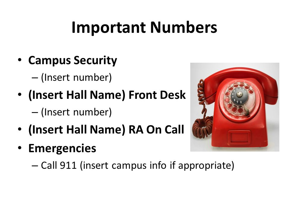 Important Numbers Campus Security – (Insert number) (Insert Hall Name) Front Desk – (Insert number) (Insert Hall Name) RA On Call Emergencies – Call 911 (insert campus info if appropriate)