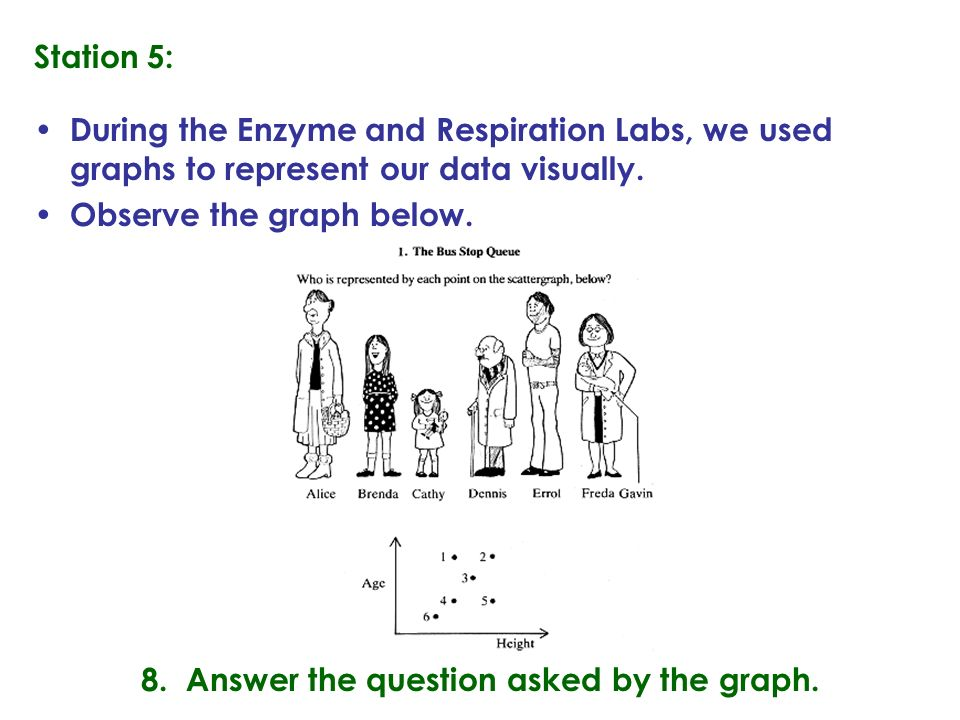 Station 5: During the Enzyme and Respiration Labs, we used graphs to represent our data visually.