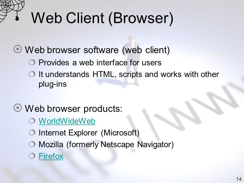 14 Web Client (Browser) Web browser software (web client) Provides a web interface for users It understands HTML, scripts and works with other plug-ins Web browser products: WorldWideWeb Internet Explorer (Microsoft) Mozilla (formerly Netscape Navigator) Firefox