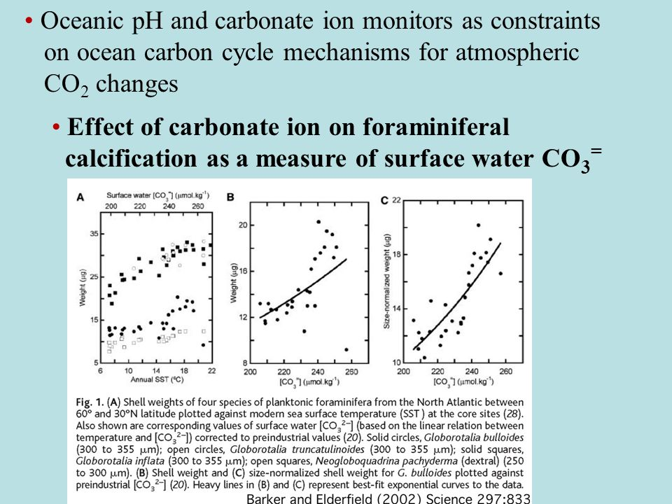 Oceanic pH and carbonate ion monitors as constraints on ocean carbon cycle mechanisms for atmospheric CO 2 changes Effect of carbonate ion on foraminiferal calcification as a measure of surface water CO 3 =