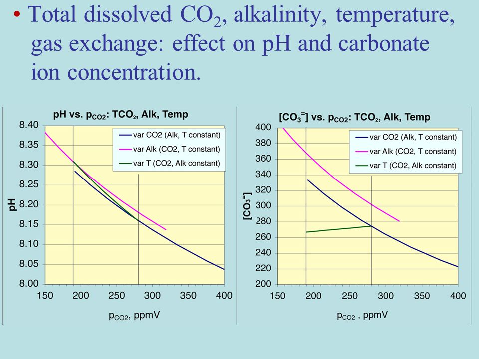 Total dissolved CO 2, alkalinity, temperature, gas exchange: effect on pH and carbonate ion concentration.