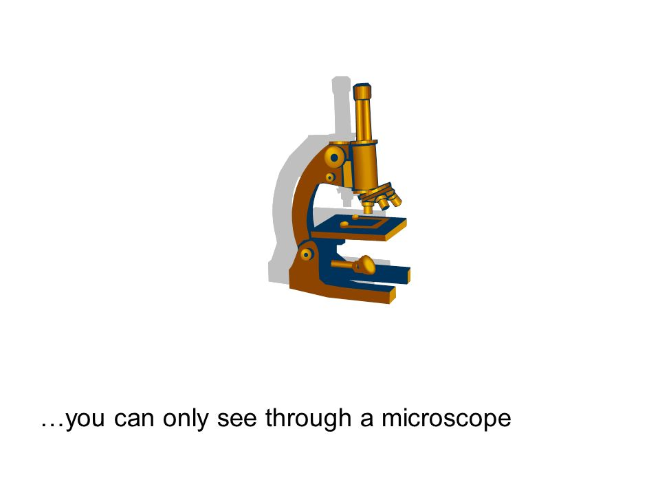 …you can only see through a microscope