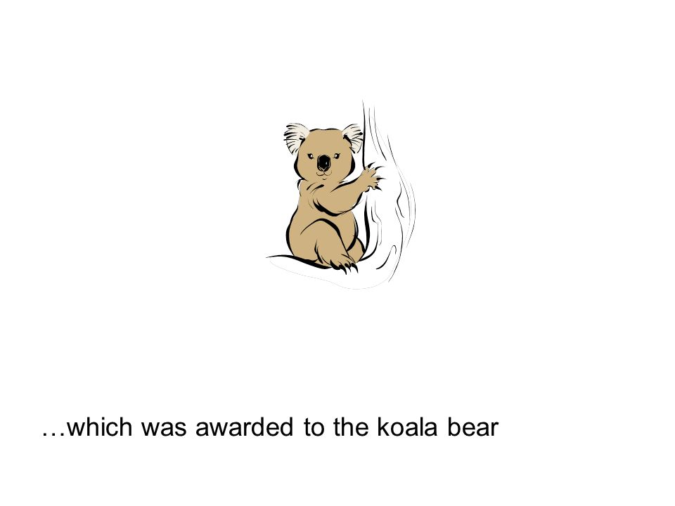…which was awarded to the koala bear