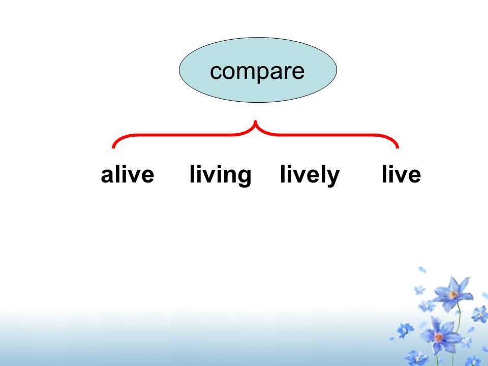 compare alive living lively live