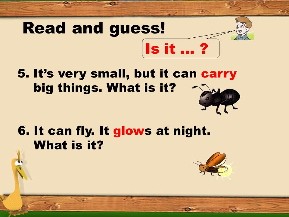 Read and guess. 3. Its small. It can fly. Its busy in the flowers.It can make honey.What is it.