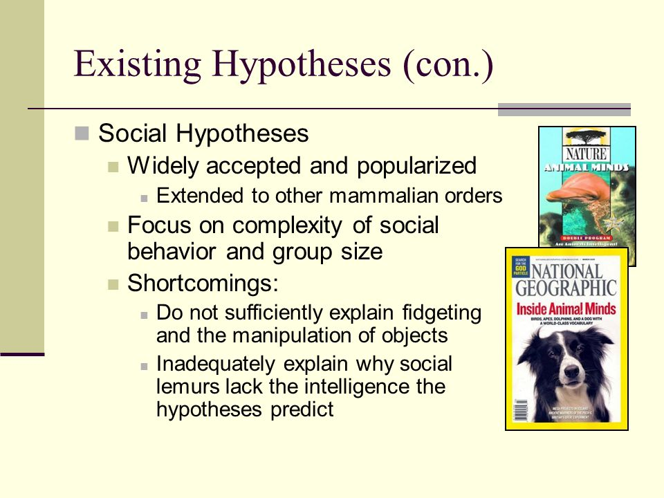 Existing Hypotheses (con.) Social Hypotheses Widely accepted and popularized Extended to other mammalian orders Focus on complexity of social behavior and group size Shortcomings: Do not sufficiently explain fidgeting and the manipulation of objects Inadequately explain why social lemurs lack the intelligence the hypotheses predict