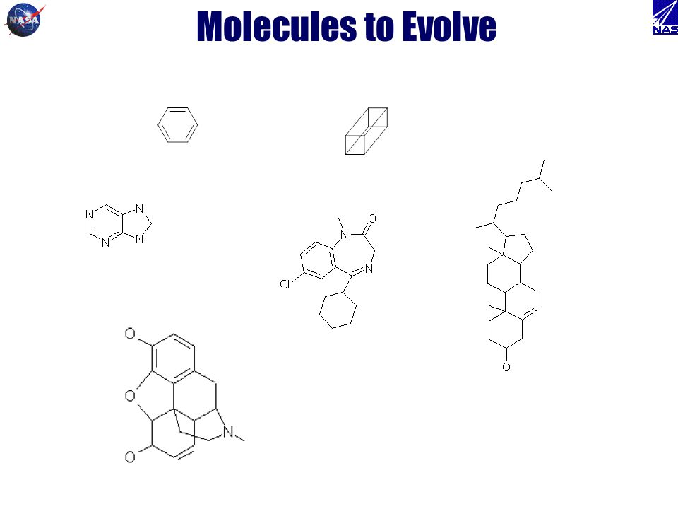 Molecules to Evolve