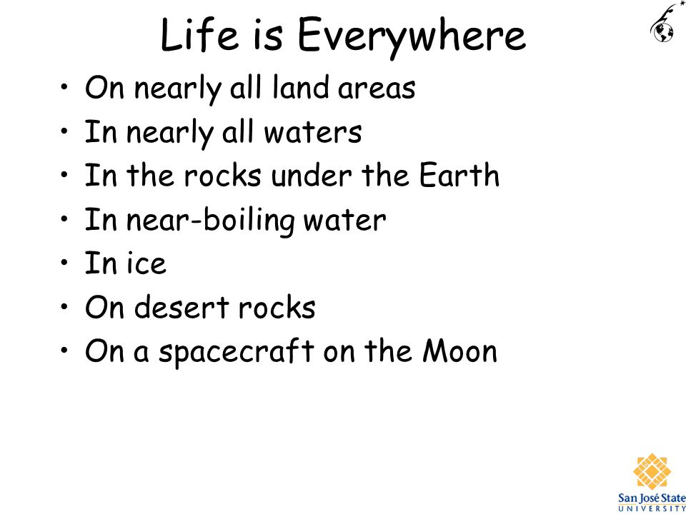 Life is Everywhere On nearly all land areas In nearly all waters In the rocks under the Earth In near-boiling water In ice On desert rocks On a spacecraft on the Moon