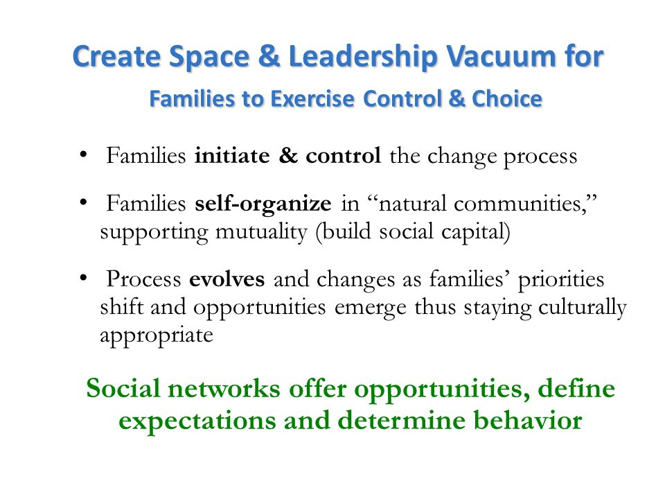 Create Space & Leadership Vacuum for Families to Exercise Control & Choice Families initiate & control the change process Families self-organize in natural communities, supporting mutuality (build social capital) Process evolves and changes as families priorities shift and opportunities emerge thus staying culturally appropriate Social networks offer opportunities, define expectations and determine behavior