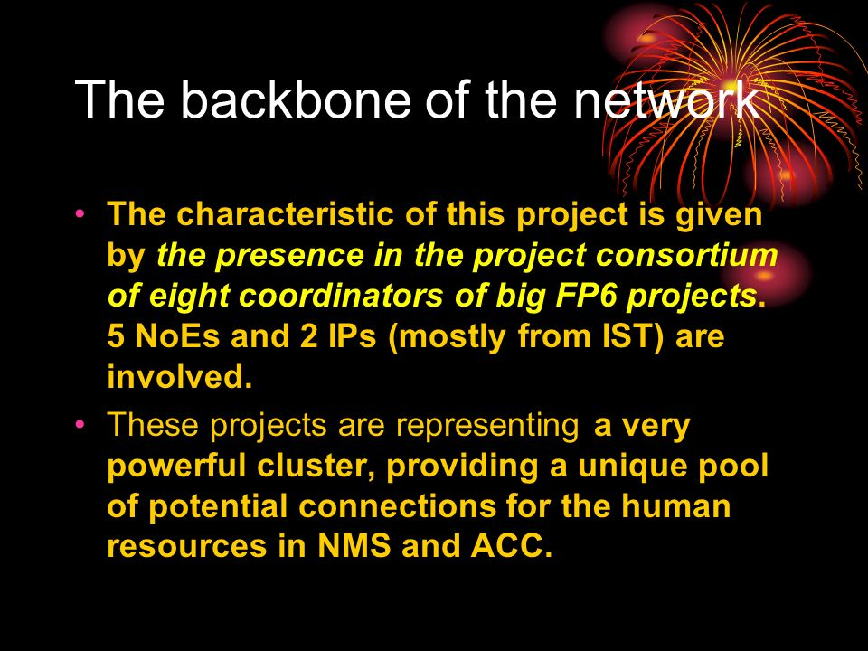 The backbone of the network The characteristic of this project is given by the presence in the project consortium of eight coordinators of big FP6 projects.