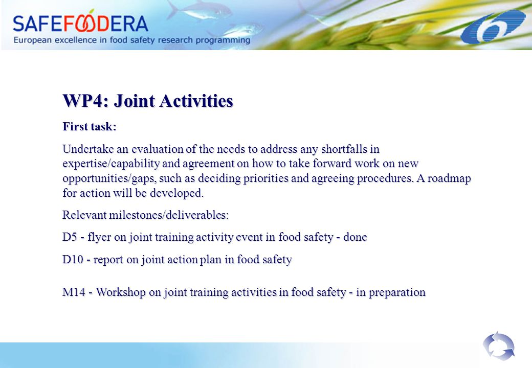 WP4: Joint Activities First task: Undertake an evaluation of the needs to address any shortfalls in expertise/capability and agreement on how to take forward work on new opportunities/gaps, such as deciding priorities and agreeing procedures.