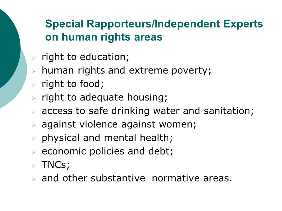 Special Rapporteurs/Independent Experts on human rights areas right to education; human rights and extreme poverty; right to food; right to adequate housing; access to safe drinking water and sanitation; against violence against women; physical and mental health; economic policies and debt; TNCs; and other substantive normative areas.