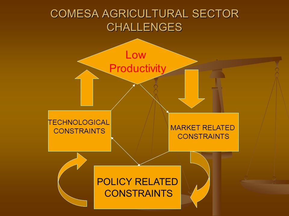 COMESA AGRICULTURAL SECTOR CHALLENGES TECHNOLOGICAL CONSTRAINTS MARKET RELATED CONSTRAINTS POLICY RELATED CONSTRAINTS Low Productivity