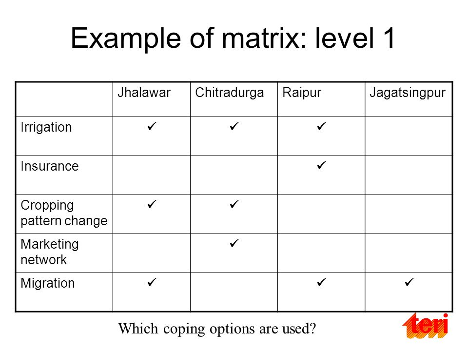 Example of matrix: level 1 JhalawarChitradurgaRaipurJagatsingpur Irrigation Insurance Cropping pattern change Marketing network Migration Which coping options are used